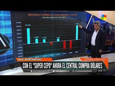 con-el-sper-cepo-macri-compra-dlares-para-alberto-cuntos-dlares-quedarn-en-el-banco-central-2019-11-27