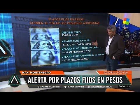 corrida-al-dlar-qu-hacen-los-pequeos-ahorristas-y-los-grandes-depositantes-desde-el-cepo-2019-10-12