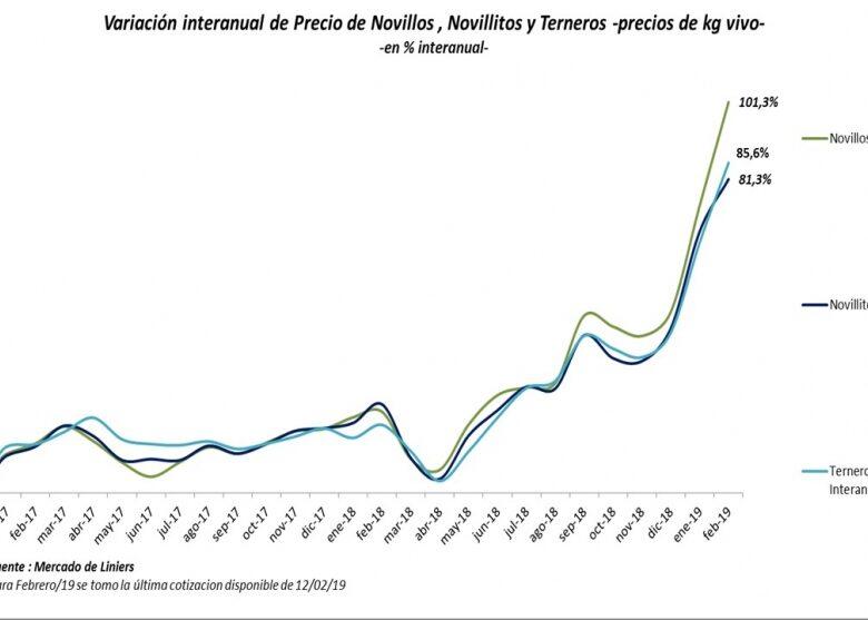 el-precio-de-la-carne-aument-495-en-el-ltimo-ao-pero-se-vienen-ms-aumentos-en-febrero-y-marzo-2019-02-12
