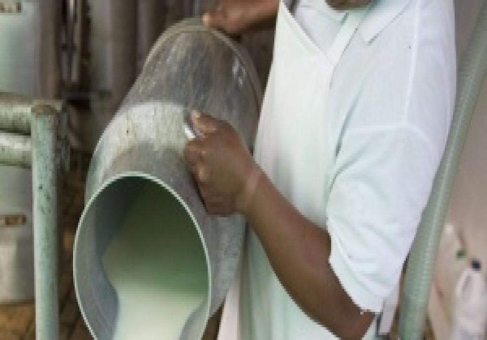mala-leche-por-que-se-tiran-miles-de-litros-2015-07-27
